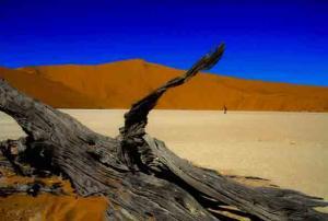 Peter Pickelmann-Sosusvlei Namibia